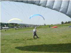 2008N429Ftanisann.jpg
