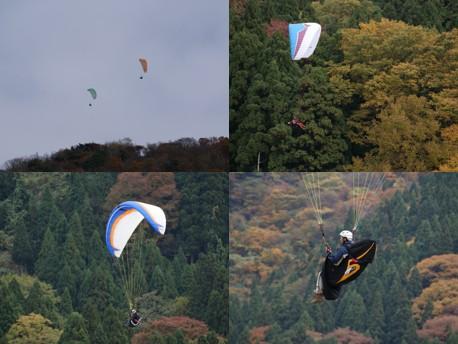 2010.11.17.jpg