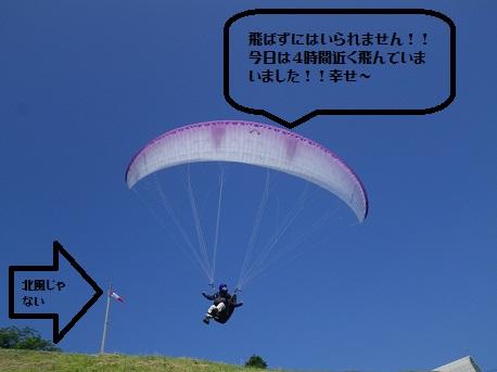 2012.06.29.nabe.jpg