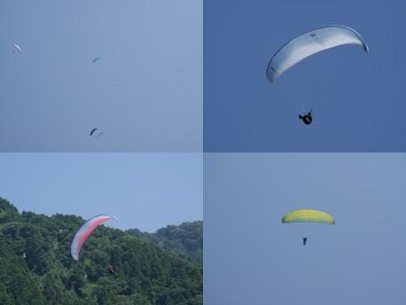 2013.08.14.P.jpg
