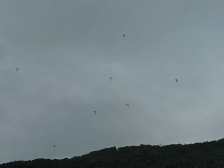 2014.07.19.soaring.jpg