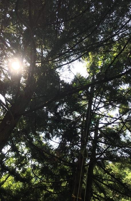2018.07.21.takahasi.jpg