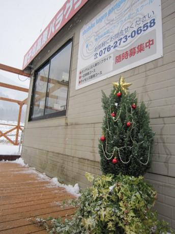 クリスマスツリー2011.jpg