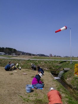 草抜き11.04.14.jpg