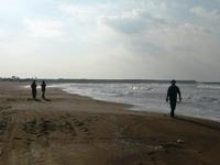 P1030266海散歩.JPG
